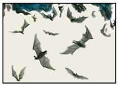 Agriimpol-pipistrelli