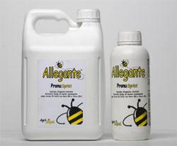 allegantePronuSprint_Conf